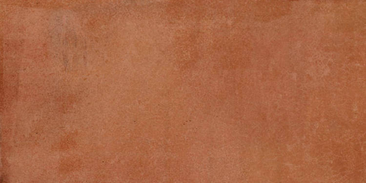 MAIOLICA BROWN 25X50 1.62